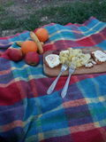 野餐 库存照片
