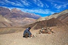 野马,尼泊尔 库存照片