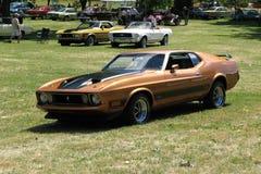 1973年野马mach1 免版税库存图片