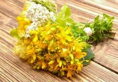 金丝桃属植物花和欧蓍草花 库存照片