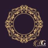 金优美的框架 边界装饰花卉 纹章学符号 向量例证