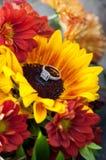金刚石在一朵开花的黄色花的定婚戒指 免版税图库摄影