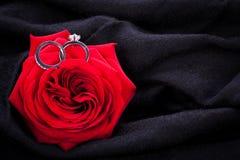 金刚石定婚戒指在一朵红色玫瑰的心脏 库存图片