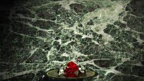 金刚石无色的红色 影视素材
