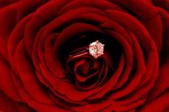 金刚石红色环形上升了 免版税库存照片