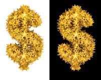 金发光的星美元的符号 库存照片