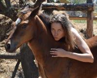 金发女孩拥抱一只红色驹 库存照片