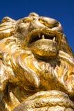 金在被隔绝的蓝色的狮子雕象 库存照片