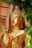 金大菩萨雕象,供以座位在给祝福姿势  免版税图库摄影
