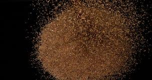 金子上色了Sesam,热带香草indicum,播种爆炸反对黑背景,陶器,慢动作 股票录像