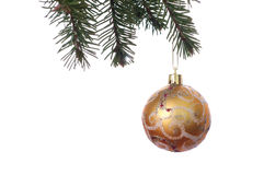 金子与装饰品的圣诞节球在绿色冷杉分支 丝毫 库存图片