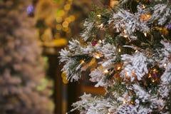 金子光圣诞节背景与装饰的树的 新年度装饰 免版税库存照片