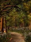 金子发出光线入森林 免版税图库摄影