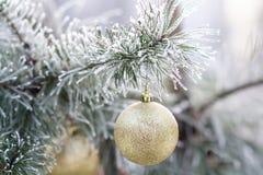 金子在一个积雪的树枝的圣诞节球 免版税库存照片