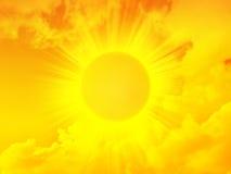 金子早晨发光的星期日 图库摄影