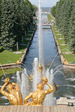 金子由喷泉盛大小瀑布镀了雕塑在Pertergof,圣彼德堡,俄罗斯 库存图片