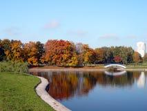 金子秋天的城市公园 免版税库存图片