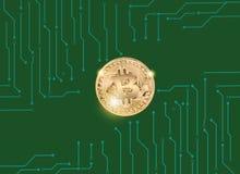 金子Bitcoin与图表的在绿色背景 免版税库存图片