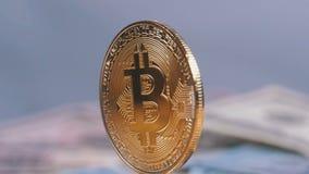金子Bitcoin硬币Cryptocurrency, BTC在与美元票据的白色背景转动  股票录像