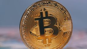金子Bitcoin硬币Cryptocurrency, BTC在与美元票据的白色背景转动  股票视频