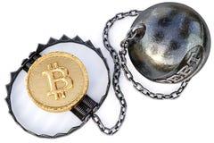 金子bitcoin cryptocurrency硬币在陷井的在白色背景 隐藏货币财政陷井概念 库存图片