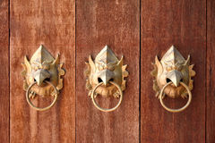 金子garuda头形状的门把手 免版税库存图片