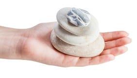 金字塔侧视图从海滩小卵石的在棕榈 免版税库存照片