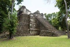 金字塔在Dzibanche 免版税库存图片