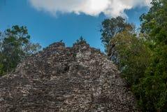 金字塔的步 其中一座印象深刻的石金字塔在科巴,古老玛雅城市废墟在尤加坦,墨西哥 库存图片