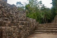金字塔的步 玛雅金字塔废墟在密林的 科巴 墨西哥,尤加坦 免版税库存图片