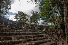 金字塔的步 玛雅金字塔废墟在密林的 科巴 墨西哥,尤加坦 库存照片