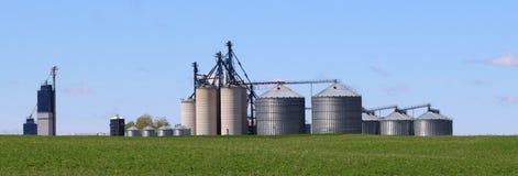 金属与春天干草的领域的五谷容器在前景的 免版税图库摄影