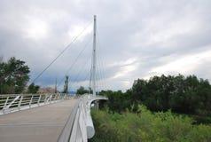金属人行桥在森林 库存照片