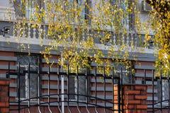 金属以一个历史建筑为背景的伪造的篱芭 库存照片