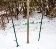金属利益和缆绳支撑的树 免版税图库摄影