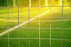 金属化与迷离绿色橄榄球或足球夏天领域的网与w 库存照片