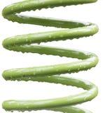金属化有绿色涂层和水滴的耐用弹簧 库存图片