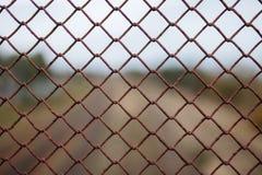 金属化网格 免版税库存图片