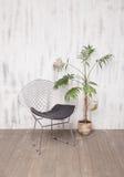 金属化躺椅和一棵棕榈树在明亮的内部 免版税库存照片