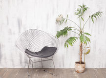 金属化躺椅和一棵棕榈树在明亮的内部 免版税库存图片