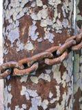 金属化铁锈柱子和链子,抽象难看的东西背景 免版税图库摄影