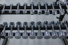 金属哑铃行在机架的在健身房或体育俱乐部 重量训练器材 库存图片