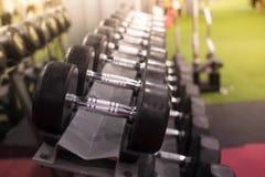 金属哑铃行在机架/体育俱乐部的 训练E的重量 库存照片