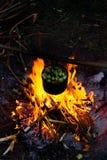金属器物 烹调罐 木柴,热病 冒险家 库存照片