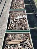 金属废料培训运输 库存照片