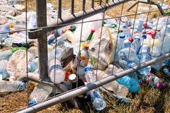 金属篱芭扔的塑料瓶 被丢掉的使用的空的宠物瓶和在草离开在一个露天党以后 免版税库存图片