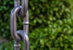 金属链子有被弄脏的树背景 免版税图库摄影