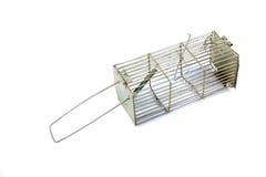 金属鼠标陷井 库存图片
