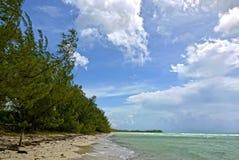 金岩石海滩,大巴哈马岛 戽水者 库存照片