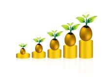 金币和油漆在金黄破裂的鸡蛋;挽救和成长 免版税库存照片